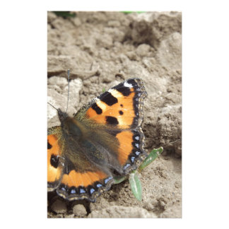 Butterfly Customised Stationery