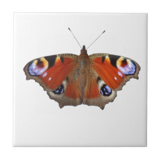 butterfly wings small square tile