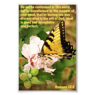Butterfly with Romans 12:2 Photo Print