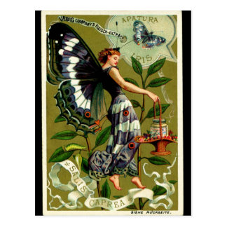 BUTTERFLY WOMAN postcard