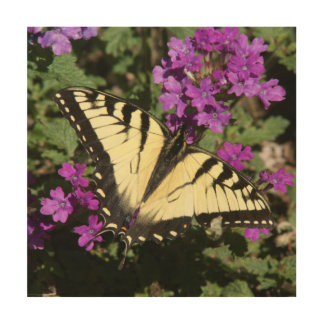 Butterfly, Wood Photo Print. Wood Prints