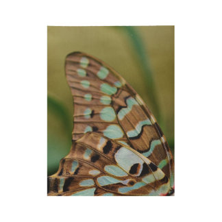 Butterfly Wood Poster