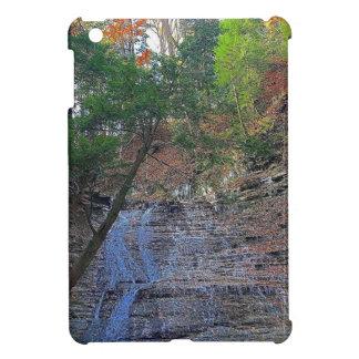 Buttermilk Falls Cuyahoga National Park Ohio iPad Mini Cases