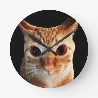 Butters Stares Funny Cat Round Wall Clock