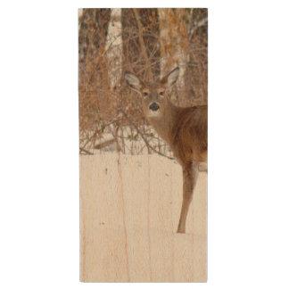 Button Buck Deer in Winter White Snowy Field Wood USB Flash Drive