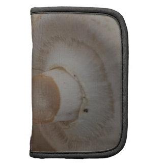 Button Mushrooms Folio Planners