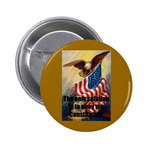 Button Pin w/ Eagle Defending liberty w/ The