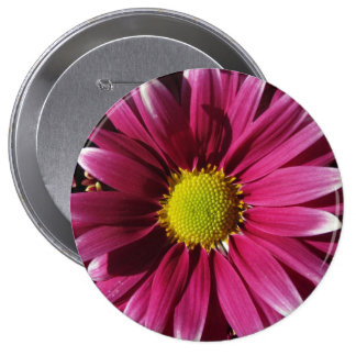Button - Red Daisy Flower