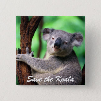 Button-Save the Koala Bear 15 Cm Square Badge