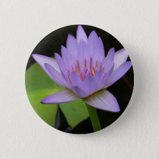 Button, Soft Lavender Water Lily  300 6 Cm Round Badge
