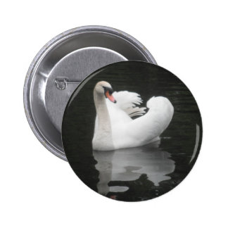 Button Swan Swimming