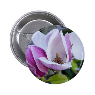 """Button, Two Magnolias, Open and Shut"""" 6 Cm Round Badge"""