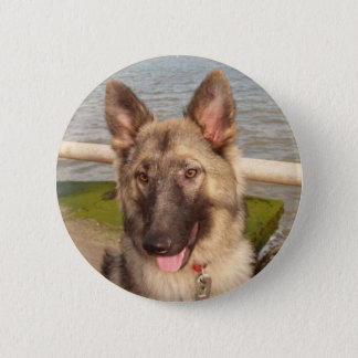 Button With German Shepherd