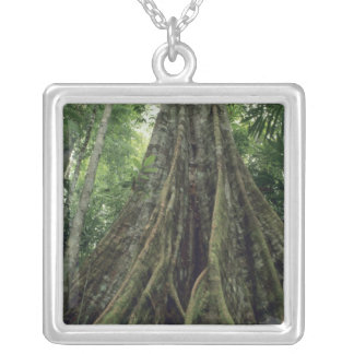 Buttressed tree in rainforest, Corcovado Square Pendant Necklace