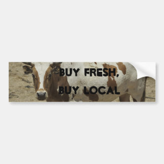 Buy Fresh, Buy Local Bumper Sticker