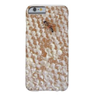 Buzz Honey Bee Phone Case