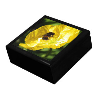 Buzzy Bee Storage Box Large Square Gift Box