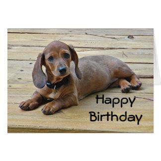 BW- Dachshund Puppy Birthday Card