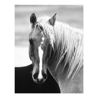 BW Horse Portrait 21.5 Cm X 28 Cm Flyer