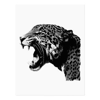 BW Jaguar Postcard