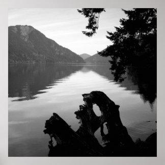 bw lake view 1 poster