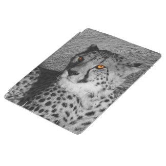 BW splash Cheetah iPad Cover