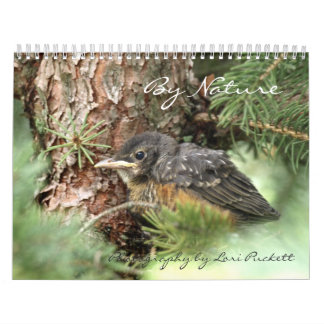 By Nature Photography Calendar 2013
