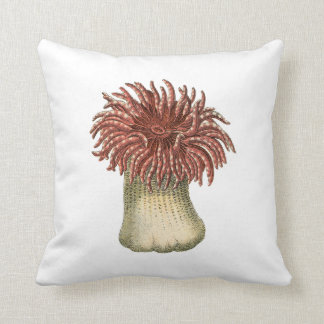 By The Sea in Coral Cushion
