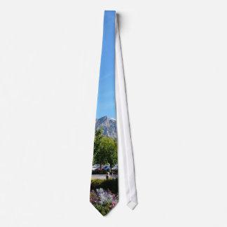 BYU Campus and Squaw Peak Tie
