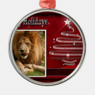 c-2011-african-lion-038 Silver-Colored round decoration