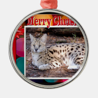 c-2011-african-serval-035 Silver-Colored round decoration