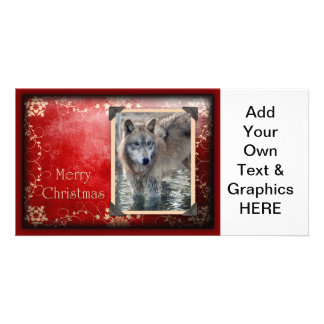 c-2011-grey-wolf-028 picture card