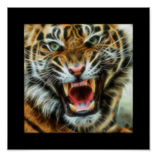 C.E. Angry Tiger Fractal Poster