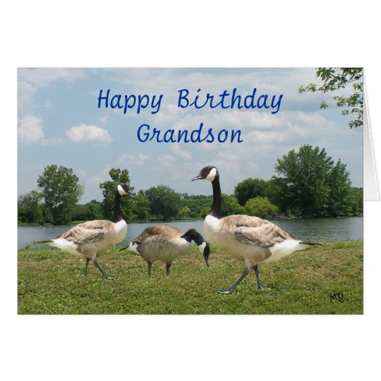 C. Geese-customise any occasion Card