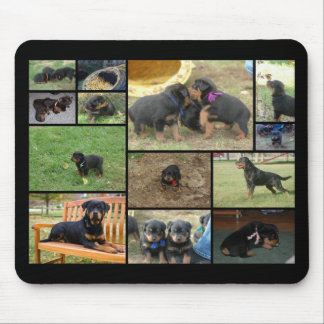 C Litter puppy collage Mouse Pad