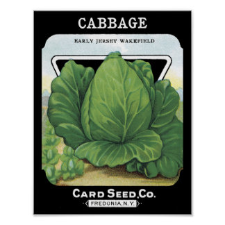 Cabbage Card Seed Co. packet Vintage Fredonia Poster