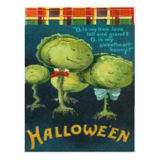 Cabbage Lettuce Tartan Postcard