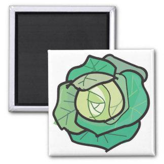 cabbage square magnet