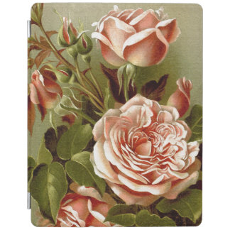 Cabbage Rose Flowers Ipad Cover