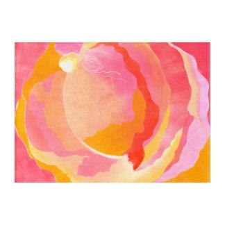 Cabbage Rose III Acrylic Print