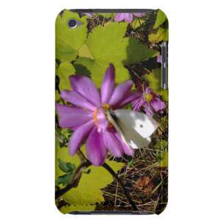 Cabbage White Butterfly on Anemone iPod Case-Mate Cases