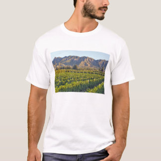 Cabernet Sauvignon vines in Huailai Rongchen 2 T-Shirt