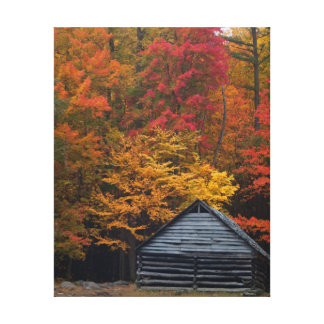 Cabin in the Smoky Mountains Stretched Canvas Prints