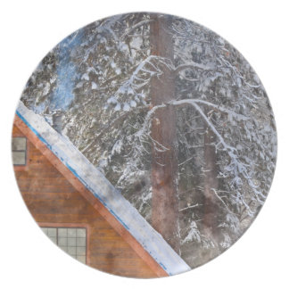 Cabin in the Snow Plate