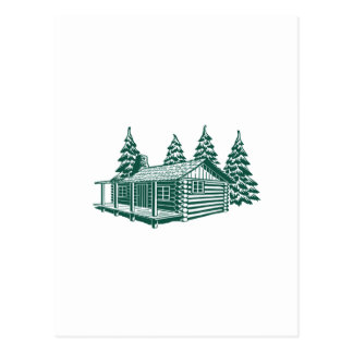 Cabin in the Woods... Postcard