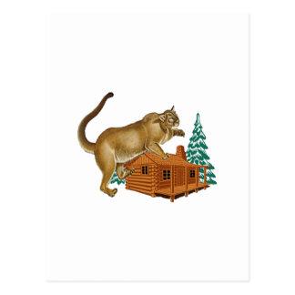 Cabin Pounce Postcard