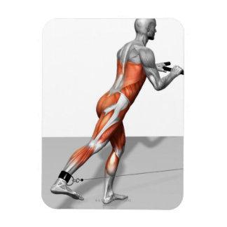 Cable Skater Exercise Rectangular Photo Magnet