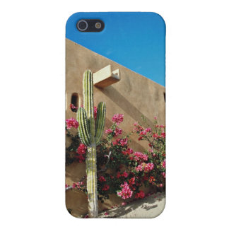 Cabo San Lucas, Baja, Mexico flowers iPhone 5 Covers