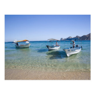Cabo Water Taxis Postcard