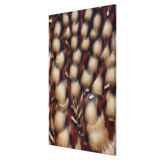 Cabot'S Tragopan Feather Pattern Canvas Print